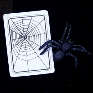 spider-and-net-the-web-magic-tricks-magic-props-stage-magic-48-discountems-50pcs-set