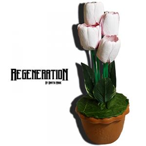 regeneration-full